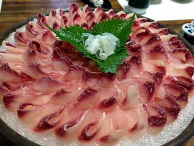 ryusensou-koiarai2.jpg