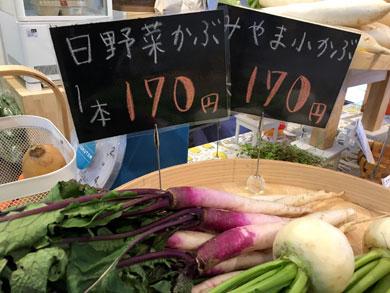 green-shokuzai.jpg